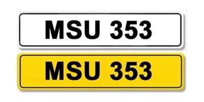 Lot 24-Registration Number MSU 353