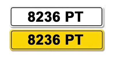 Lot 8-Registration Number 8236 PT