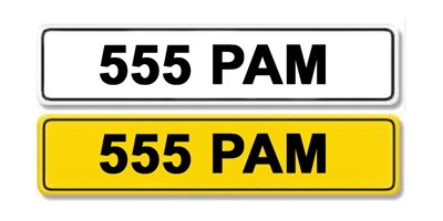 Lot 9 - Registration Number 555 PAM