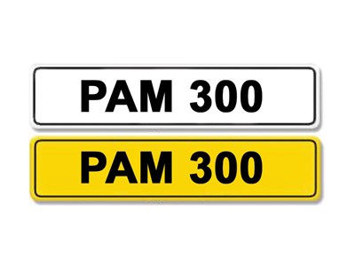 Lot 1 - Registration Number PAM 300
