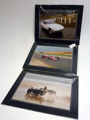Lot 24-Three Large-Format Lotus Photographs