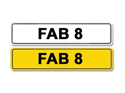 Lot 3-Registration Number FAB 8