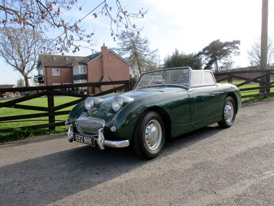 Lot 79-1959 Austin-Healey 'Frogeye' Sprite