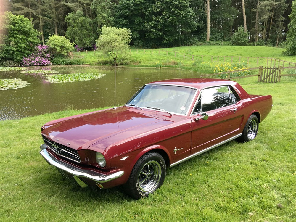 Lot 8-1964 Ford Mustang 289